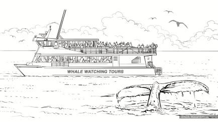 PenFed Cashback Whale 1
