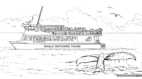 PenFed, Cashback Whale, BW storyboard frame 1 - White64