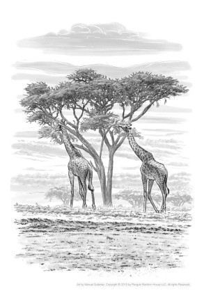 Where is the Serengeti? Page 12