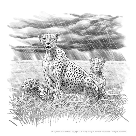 Where is the Serengeti? Page 14