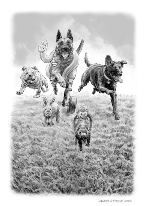 pawtriot dogs 1- 17