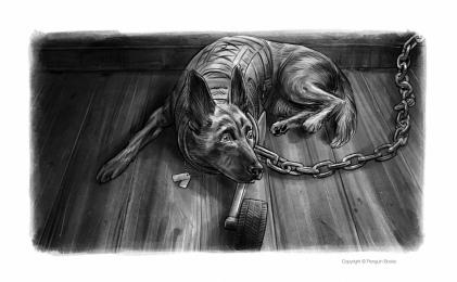 pawtriot dogs 3- 15